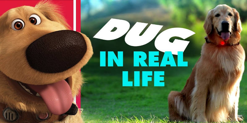 Dug in Real Life: il simpatico cane di UP diventa reale, ecco il video