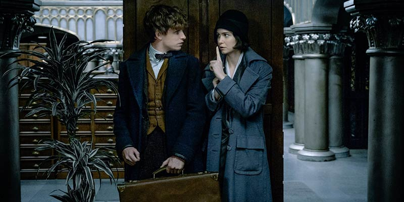 newt-scamander-and-tina-goldstein-cover