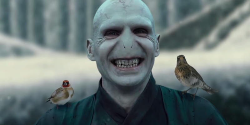 Beauty and Lord Voldemort 02