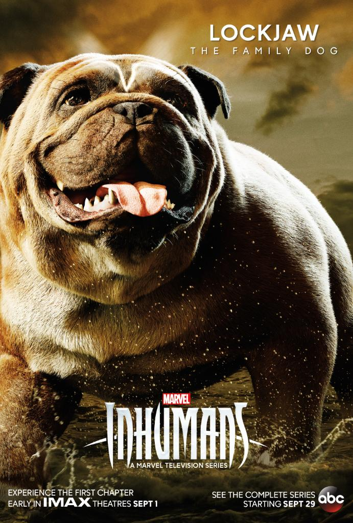 lockjaw-inhumans-poster