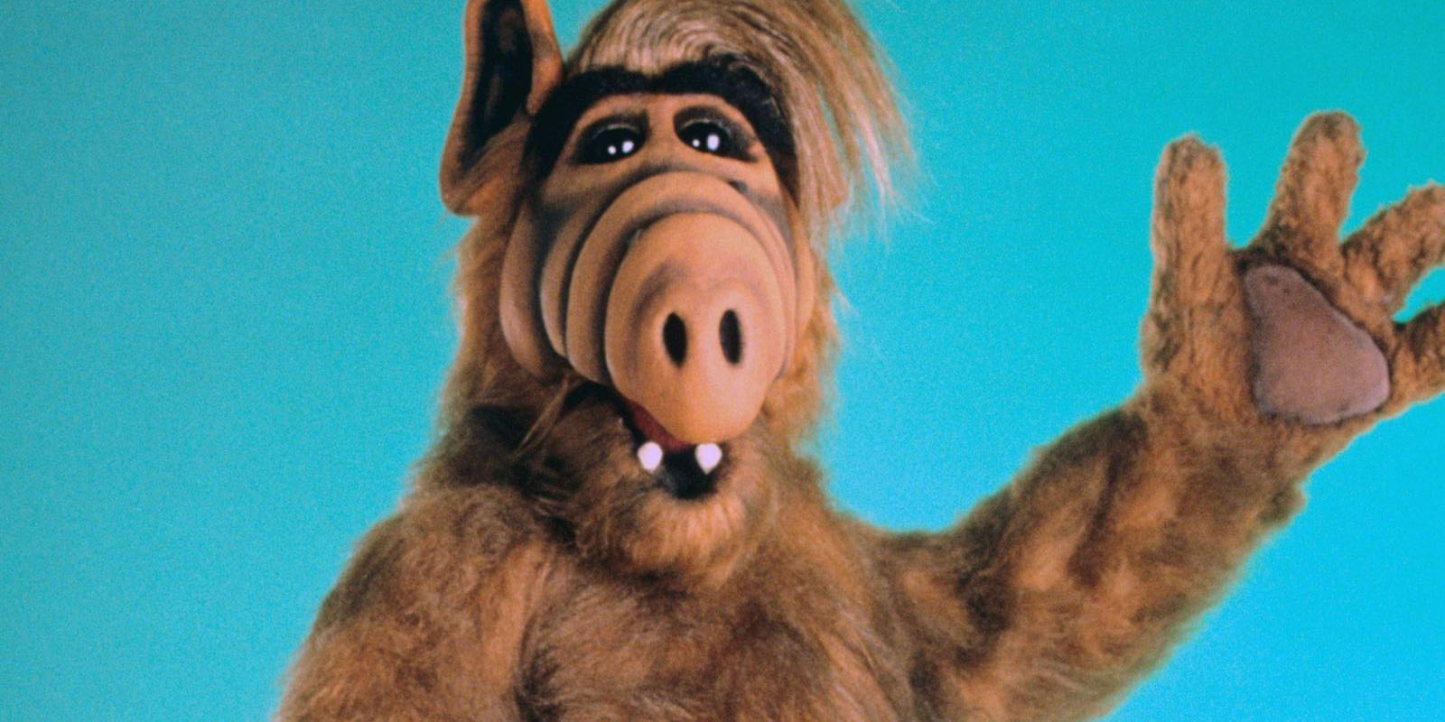 THE DOC(MANHATTAN) IS IN – ALF